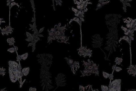 smart-art-botanical-floral-pattern-design-21