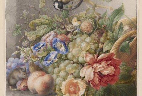 smart-art-botanical-floral-pattern-design-33