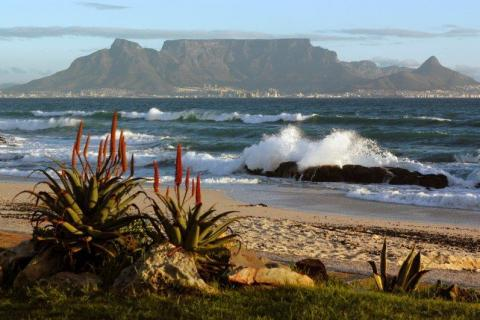 smart-art-cape-town-12-apostels-lions-head-cable-car-sea-aloes-waterfront-mountains-western-cape-122