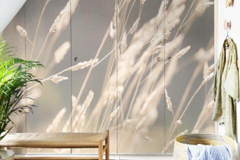 simple-scandinavian-bedroom-ideas-beautiful-dry-grass-in-sunset-sunlight-sun-shining-13