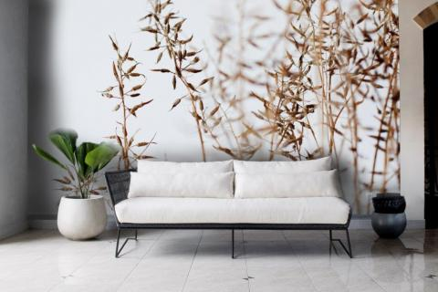 simple-scandinavian-bedroom-ideas-beautiful-dry-grass-in-sunset-sunlight-sun-shining-14