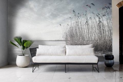 simple-scandinavian-bedroom-ideas-beautiful-dry-grass-in-sunset-sunlight-sun-shining-17