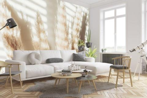 simple-scandinavian-bedroom-ideas-beautiful-dry-grass-in-sunset-sunlight-sun-shining-20