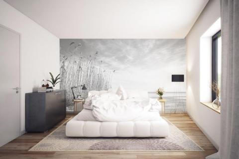 simple-scandinavian-bedroom-ideas-beautiful-dry-grass-in-sunset-sunlight-sun-shining-23