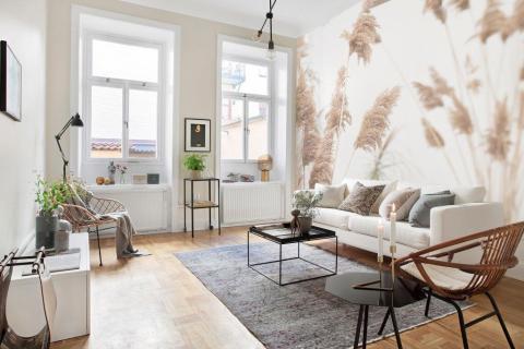 simple-scandinavian-bedroom-ideas-beautiful-dry-grass-in-sunset-sunlight-sun-shining-28