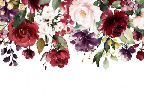 smart-art-flowers-roses-protea-fynbos-macro-poppy-17