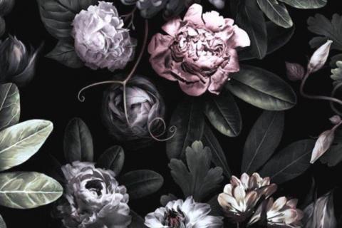 smart-art-flowers-roses-protea-fynbos-macro-poppy-54