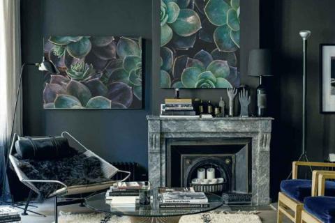 smart-art-cactus-designer-canvas-frrames