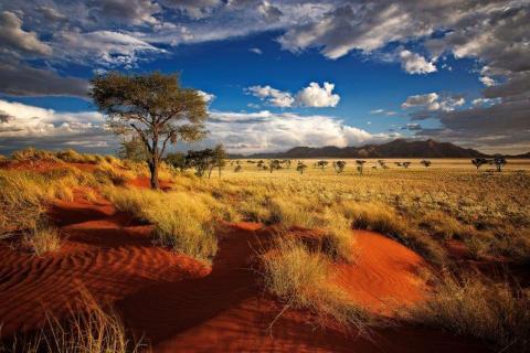 smart-art-landscapes-karoo-cape-town-stellenbosh-winelands-joh-29