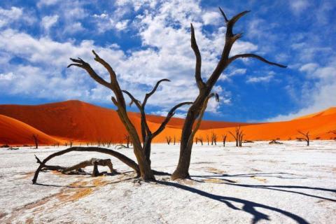 smart-art-landscapes-karoo-cape-town-stellenbosh-winelands-joh-35