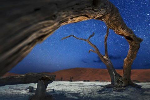 smart-art-landscapes-karoo-cape-town-stellenbosh-winelands-namibia-127
