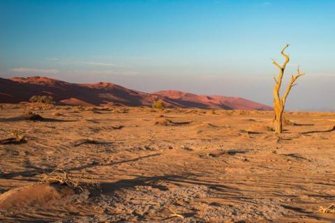 smart-art-landscapes-karoo-cape-town-stellenbosh-winelands-namibia-129