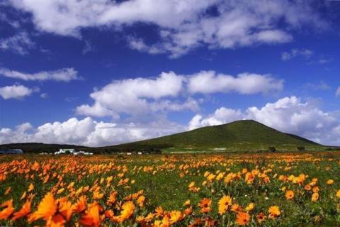 smart-art-landscapes-karoo-cape-town-stellenbosh-winelands-namibia-158