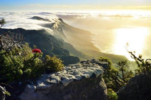 smart-art-landscapes-karoo-cape-town-stellenbosh-winelands-namibia-175