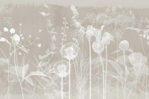 smart-art-wallpaper-design-Trend-2021-grass-neutral-beige-grey-soft-pantone-designs-19
