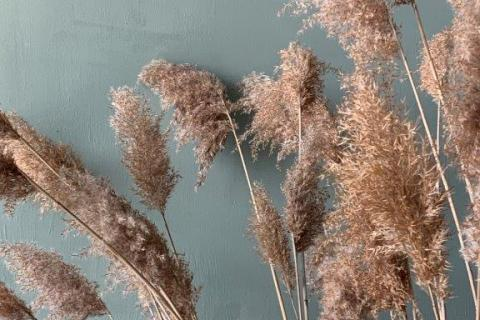 smart-art-wallpaper-design-Trend-2021-grass-neutral-beige-grey-soft-pantone-designs-28