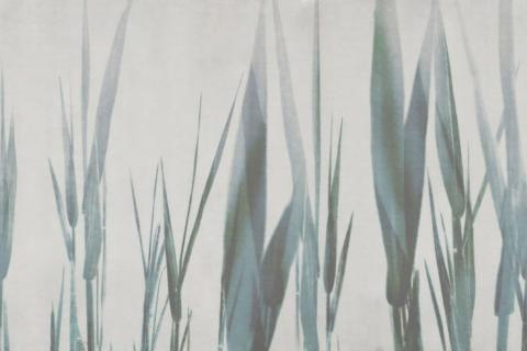 smart-art-wallpaper-design-Trend-2021-grass-neutral-beige-grey-soft-pantone-designs-9