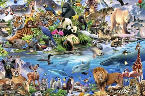 smart-art-kiddies-wallpaper-zoo-animals-lion-elefant-bami-13