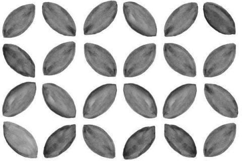 Smart-Art-Boho-Black-and-White-Monochrome-Pattern-Seamless-Design-73