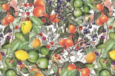 fruit-and-berries