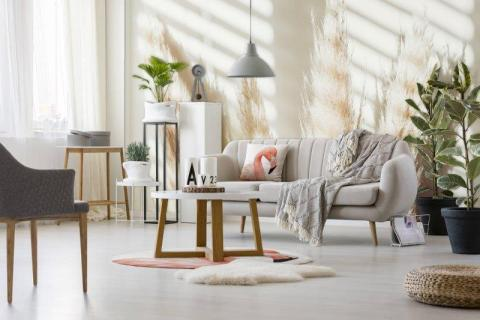 smart-art-designer-pampas-dry-grass-wallpaper-with-pink-flamingo-custom-printed-carpet-and-cushion