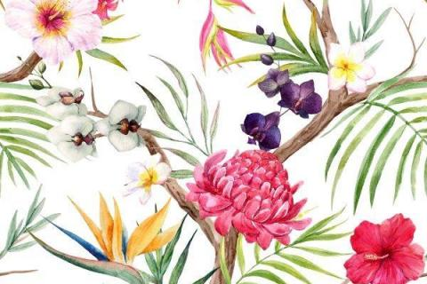 parot-banana-leaves-leopard-flamingo-32