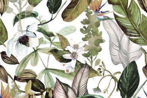 parot-banana-leaves-leopard-flamingo-38