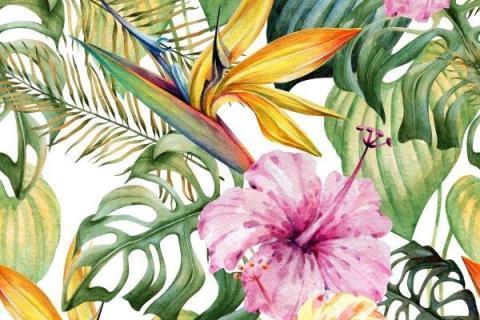parot-banana-leaves-leopard-flamingo-49
