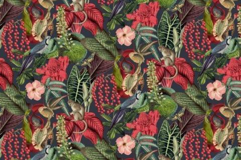 parot-banana-leaves-leopard-flamingo-83