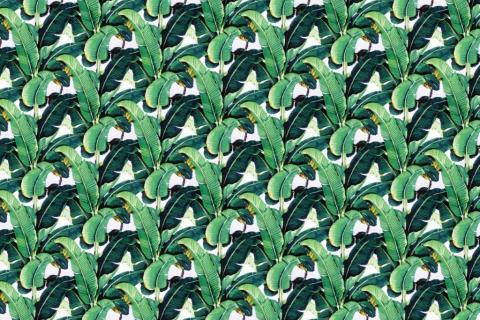 parot-banana-leaves-leopard-flamingo-86