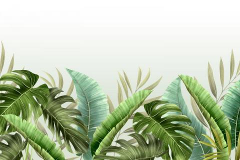 parot-banana-leaves-leopard-flamingo-90