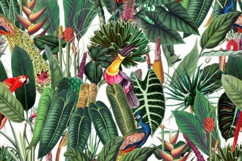 parot-banana-leaves-leopard-flamingo-93