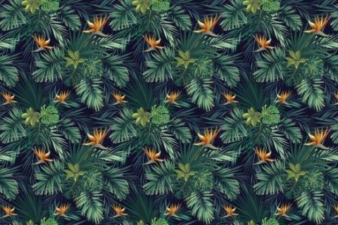 parot-banana-leaves-leopard-flamingo-96