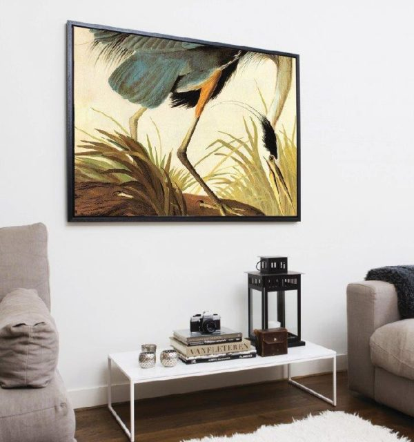 Smart Art Printed Canvas bird blue and yellow in grass-01