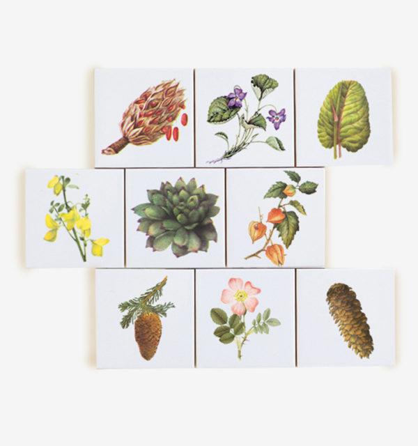 Smart Art Printed Tiles Floral Design