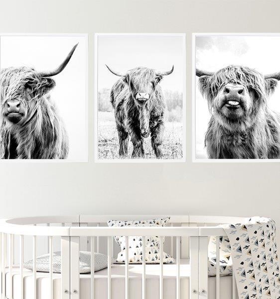 Smart Art Bespoke Printed Photopaper Poster Prints Highlander Cows