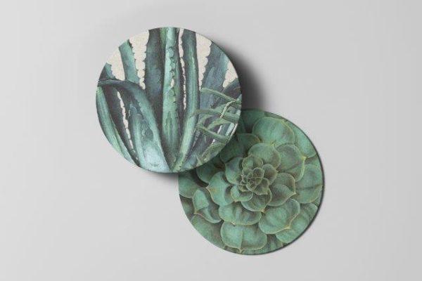 Smart Art Bespoke Printed Succulents Coaster